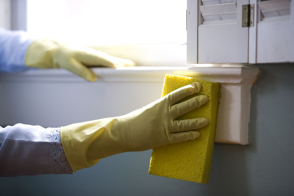 useful kitchen cleaning tips